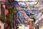 Freiburg: Gässle, Bächle and the Freiburg Minster City Tour