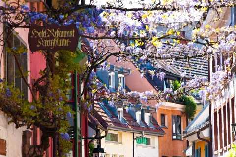 Freiburg: Gässle, Bächle und das Freiburger Münster