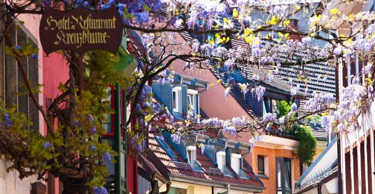 Fribourg: Gässle, Bächle et le Freiburg Minster City Tour