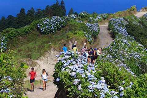 Ponta Delgada: Full-Day Hiking Tour to Sete Cidades