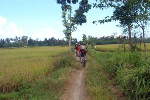 Fahrt mit dem Fahrrad zum Golong Village und zum Lingsar-Tempel