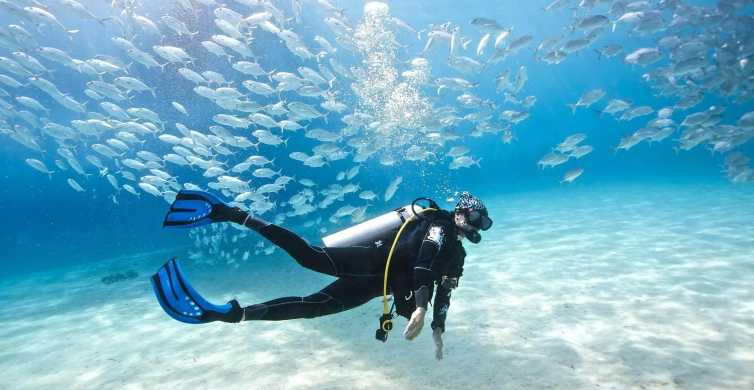 Hurghada: sortie plongée d'une journée avec déjeuner