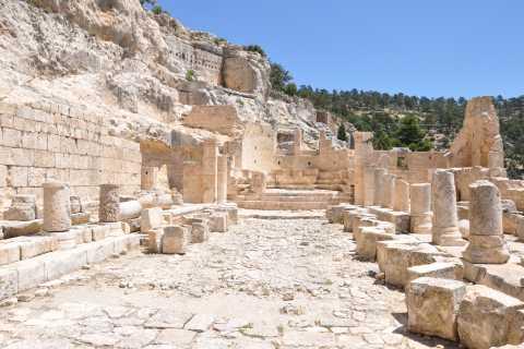 Ephesus: 2-Hour Small Group Walking Tour