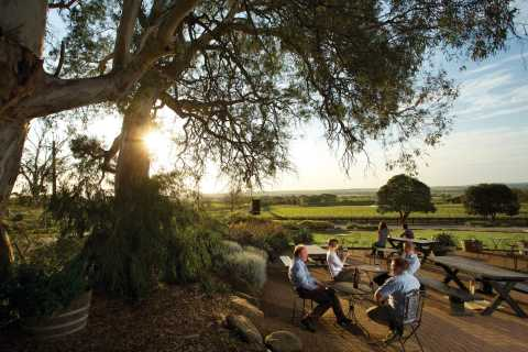 Adelaide: Barossa Valley Hop-on Hop-off Tour
