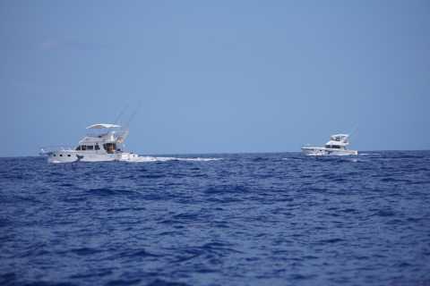 Viaje de descubrimiento en barco privado Blue Quest