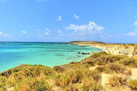 Desde el área de Chania: excursión de un día a la isla de Elafonisi en autobús