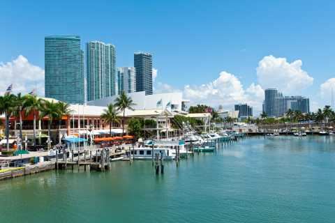 Miami: Half-Day City and Boat Tour