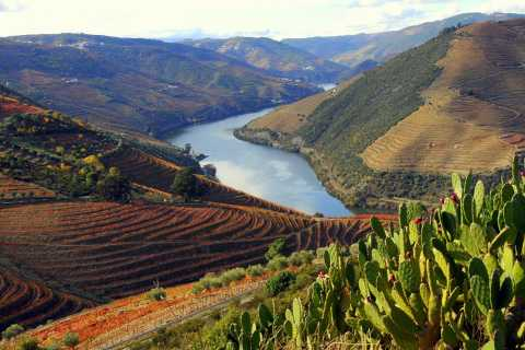 Douro Valley Private Full–Day Tour from Porto