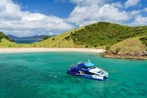The Cream Trip: A Day in the Bay of Islands