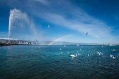 Geneva: Excursão Turística na Cidade e Cruzeiro