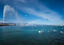 What to do in Geneva - Geneva City Tour and Boat Cruise