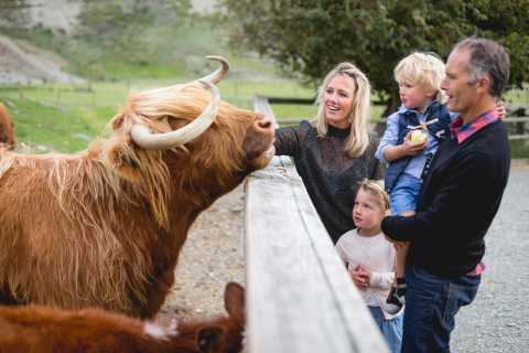TSS Earnslaw: Cruise and Walter Peak Farm Tour