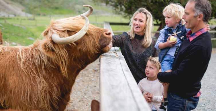TSS Earnslaw: Cruise and Walter Peak Farm Tour
