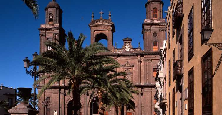 Las Palmas: Full-Day Tour och Poema del Mar Aquarium Visit