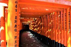 De Quioto: Excursão de 1 Dia Locais Históricos e da Unesco
