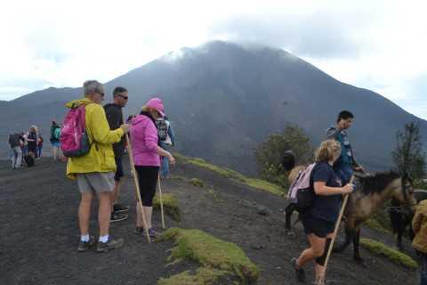 From Antigua: 1-Day Guatemala-Pacaya Active Volcano Hike