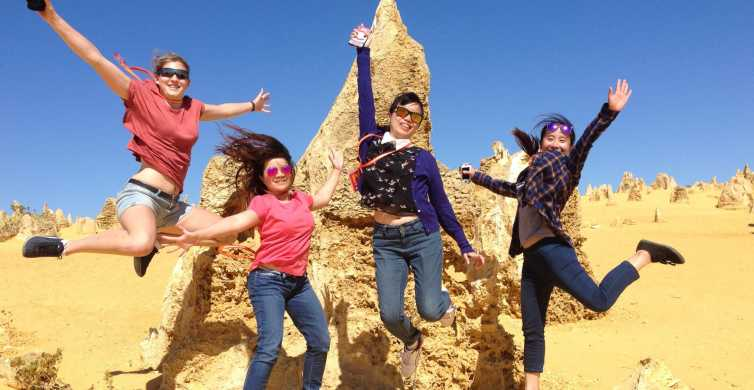 From Perth: Yanchep National Park and The Pinnacles Day Trip
