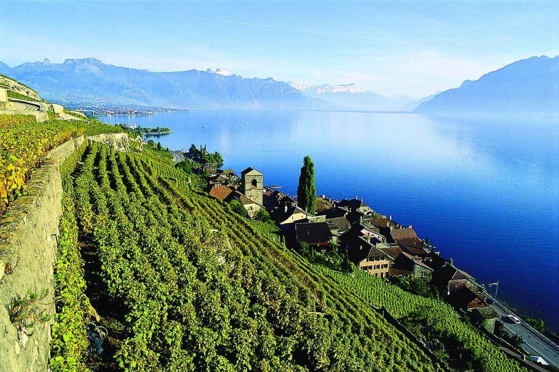 Genf: Riviera Montreux, Lavaux UNESCO & optionale Kreuzfahrt