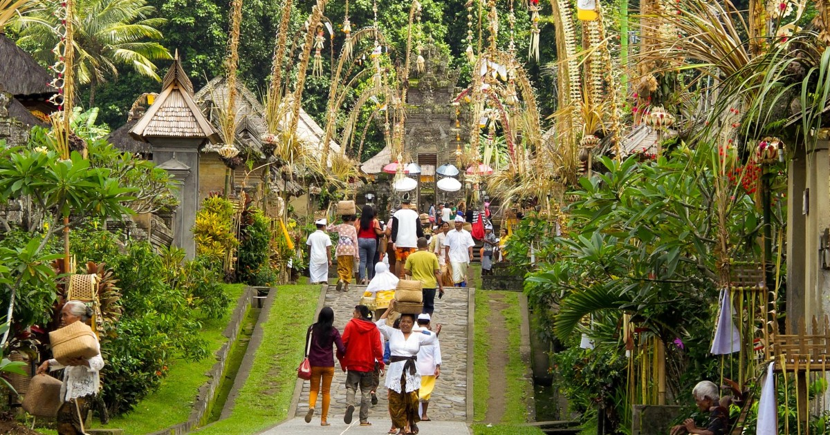Bali Full Day Trip To Penglipuran Village And Bamboo Forest Getyourguide