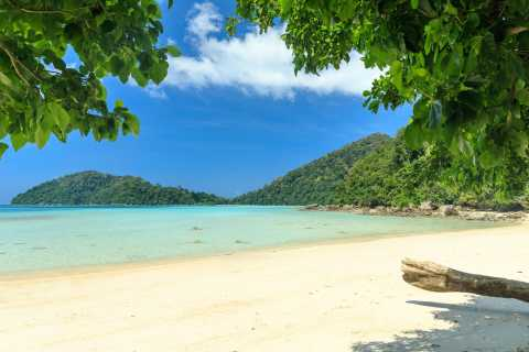From Khao Lak: Full-Day Snorkeling in the Surin Islands