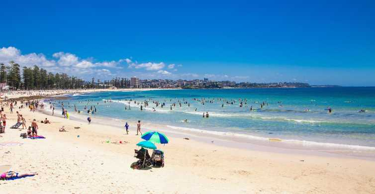 Half-Day Manly Beach and City Tour with Harbour Lunch Cruise