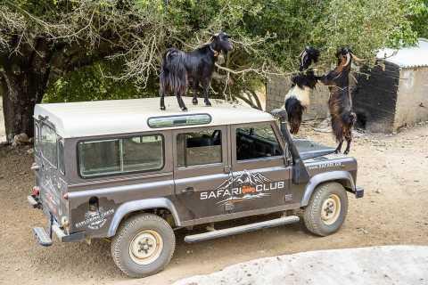 Crete: Land Rover Safari on Minoan Route