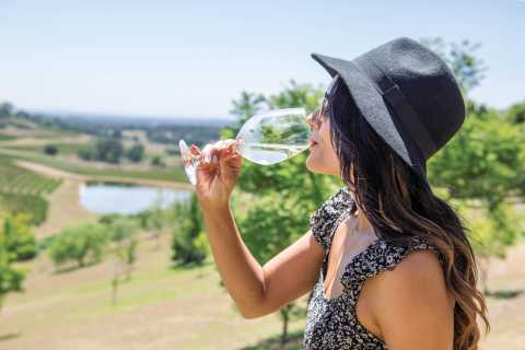 Hunter Valley: Wine Tour with 3 Tastings and Garden Lunch