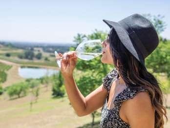 Hunter Valley: Weintour mit 3 Verkostungen & Mittagessen