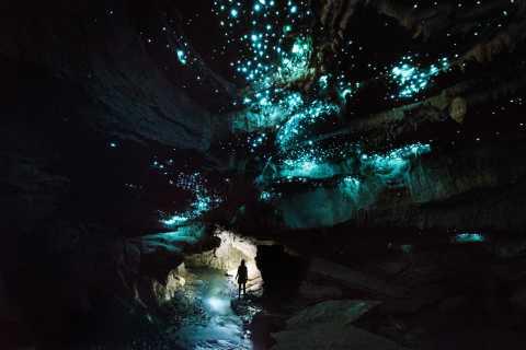 Waitomo: Glowworm Cave 3-Hour Guided Eco-Tour