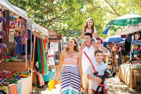 Sunshine Coast Hinterland and Noosa Small Group Tour