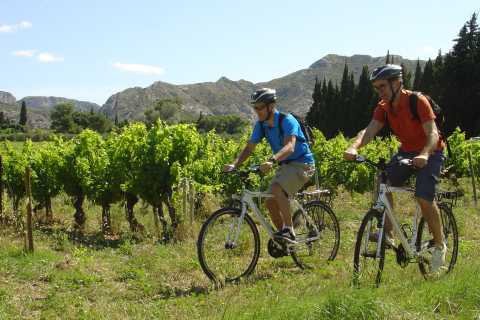 From Avignon: Private Guided L'Isle-sur-la-Sorgue Bike Tour
