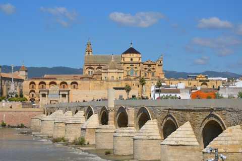 Córdoba: Private Walking Tour
