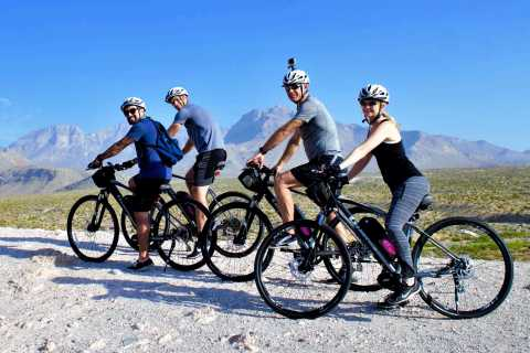 From Las Vegas: Red Rock Canyon Electric Bike Hire