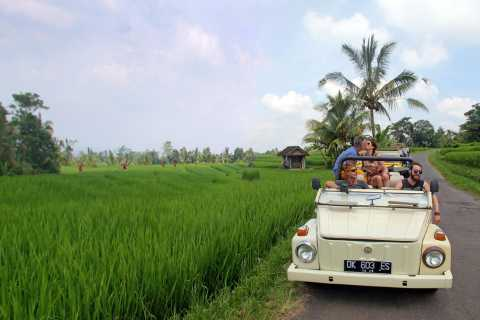 West Bali: Discover the Untouched by VW Cabrio Jeep