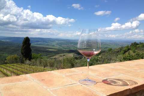 Discover Small Organic and Biodynamic Brunello Wineries