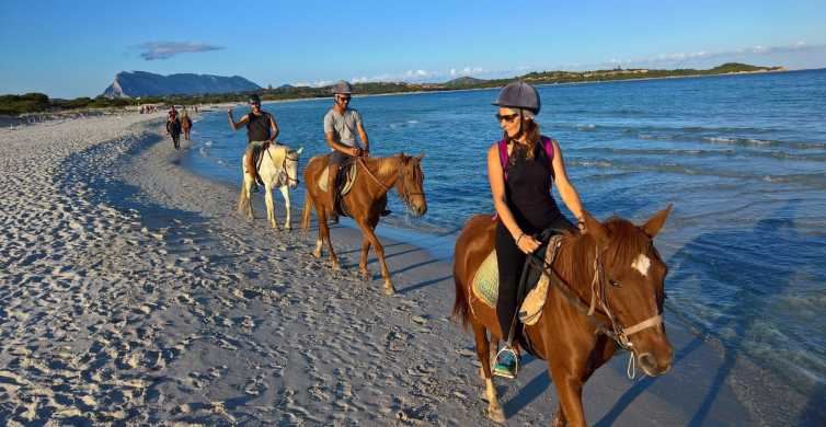 From Chia: Cagliari Half–Day Horseback Riding Tour