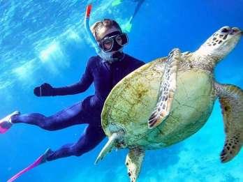 Ab Cairns: Great Barrier Reef Tour mit Marine World Pontoon