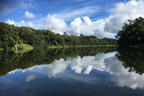 Crociera sul battello fluviale Kuranda Rainforest