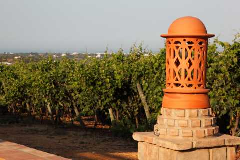 Algarve Historical Tour with Wine Tastings
