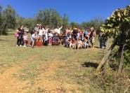 Chianti Natural Wine Tour mit toskanischem Mittagessen