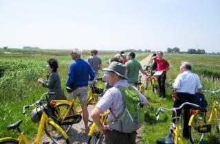 Ab Amsterdam: Halbtägige Fahrradtour durch die Landschaften