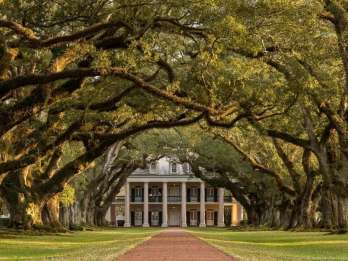 Ab New Orleans: Oak Alley Plantation Tour