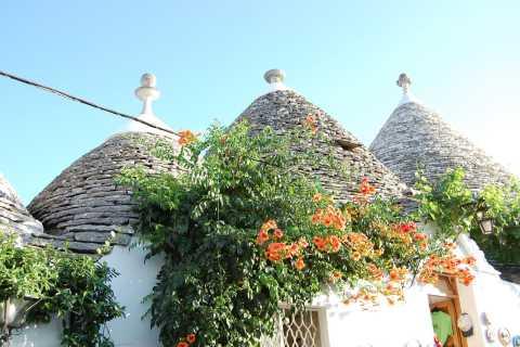 Alberobello: 1.5-Hour Walking Tour