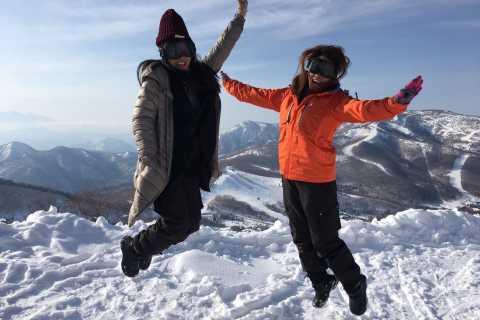 1 Day Tour: Snow Monkeys & Snow Fun in Shiga Kogen
