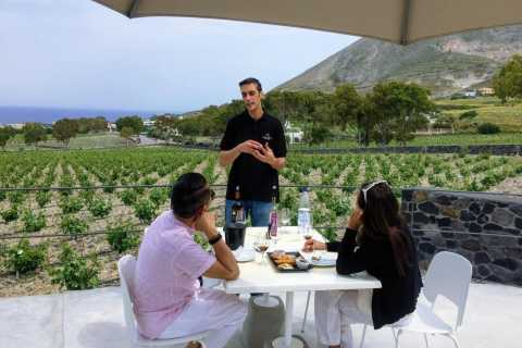 Private Group Visit to Akrotiri & 3 Wineries with Tastings