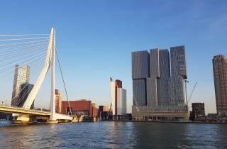 Von Amsterdam: Privattagesausflug nach Rotterdam und Kinderdijk