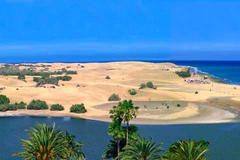 Från Las Palmas: guidad tur på Gran Canaria