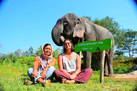 Elephant Retirement Park Volunteering and Homestay Program