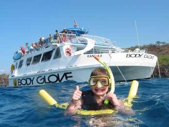 Big Island: Öko-Schnorcheltour mit Delphin-Watching