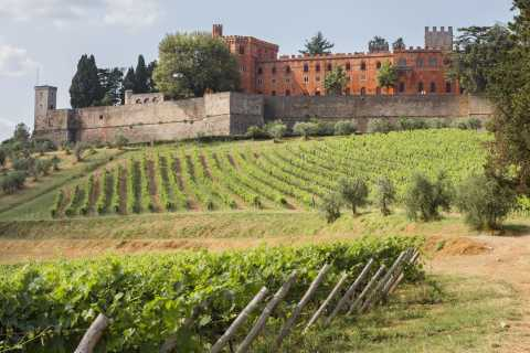 Medieval Castles & Chianti Wine Tasting Tour with Lunch